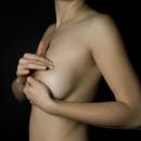 Siebte Ehinger Brustgespraeche